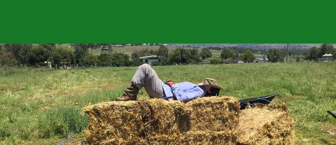 taking a little rest